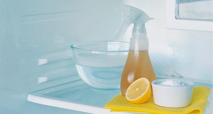 народные средства от зловонного запаха в холодильнике