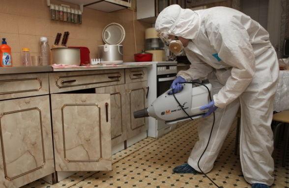 методы борьбы паразитами в организме
